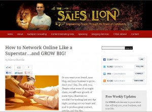The Sales Lion Website